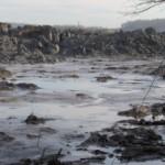 EarthTalk: Tennessee coal ash spill