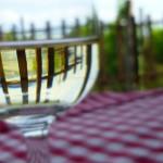 Home & Garden: Summer Sipping