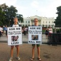 featured image Russian activist stages White House protest