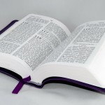 N.C. magistrate and minister uses Bible to defend civil gay marriage