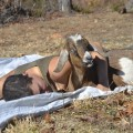 featured image Western: Owl farm showcases homesteading