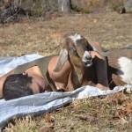 Western: Owl farm showcases homesteading