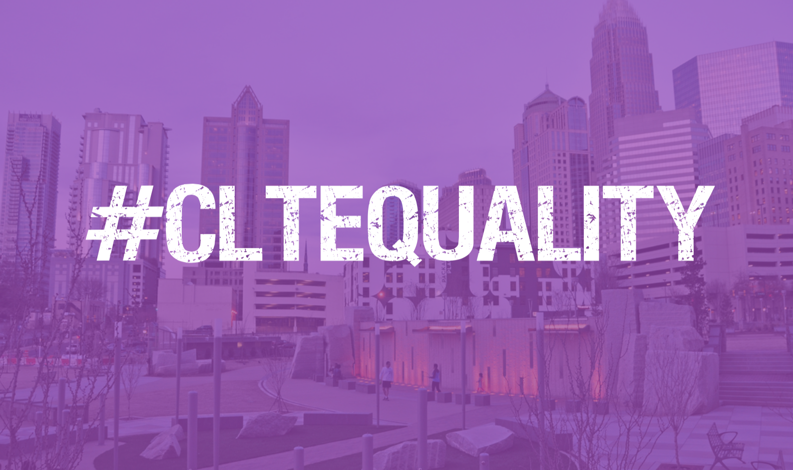 Charlotte City Council Ordinances