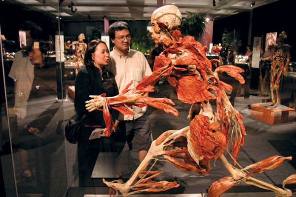 "One of the most iconic Body Worlds pieces is the ""running man."""
