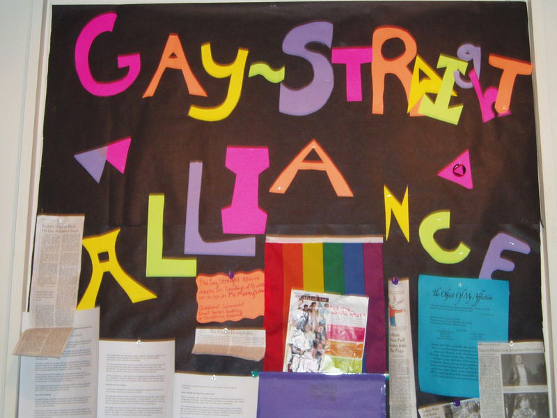 the community and school support for gay youth Social and support group for lgbtq youth, classroom and community education  school-related resources  to provide networking and support for gsas youth .