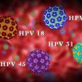 featured image 5 Things to Know about HPV