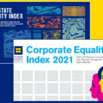 Orgs Release Equality Indexes